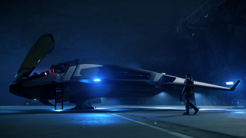 Star Citizen: Raven, ready