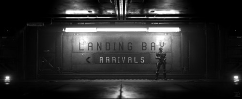 Star Citizen: Landing Bay